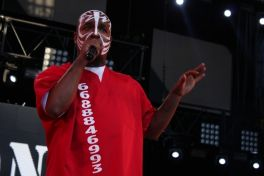 techn9ne6 In Photos: Rock the Bells 2013: San Francisco