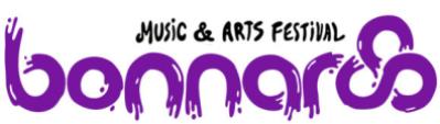 bonnaroo-music-and-arts-festival1