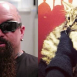 Slayer Cat