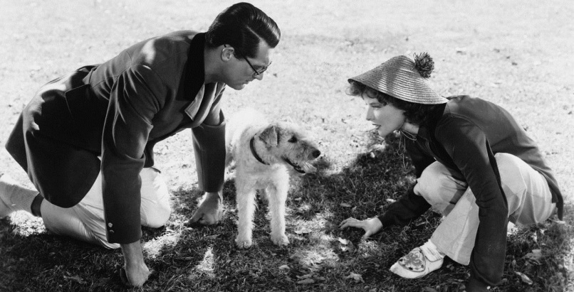 george bringing up baby The 101 Greatest Dogs in Film History