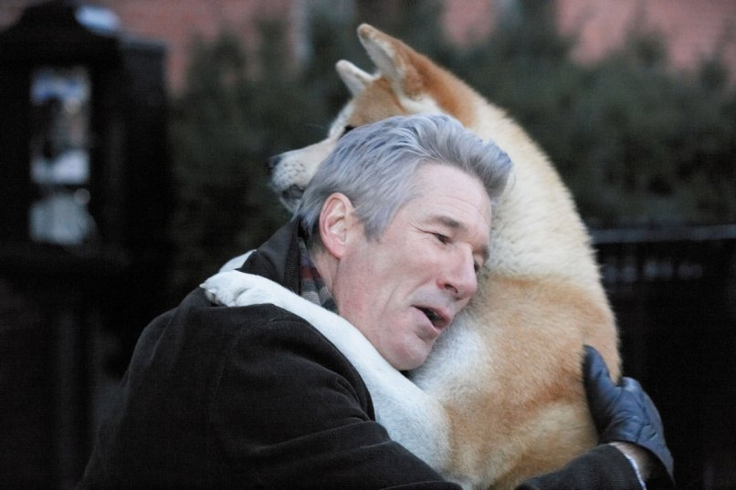hachi The 101 Greatest Dogs in Film History