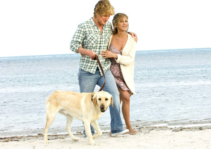 marley and me The 101 Greatest Dogs in Film History