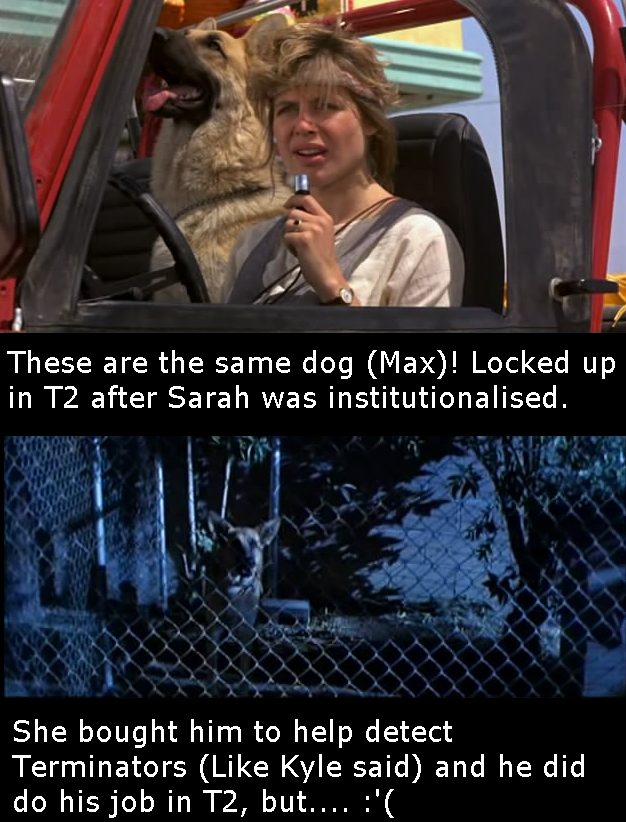 max terminator 1 2 The 101 Greatest Dogs in Film History