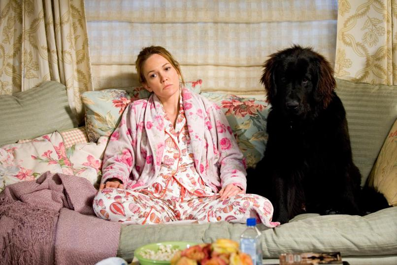 must love dogs The 101 Greatest Dogs in Film History