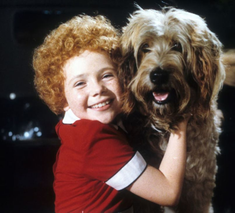 sandy annie The 101 Greatest Dogs in Film History