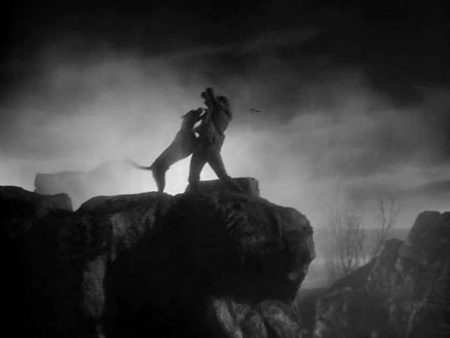 baskerville3q The 101 Greatest Dogs in Film History