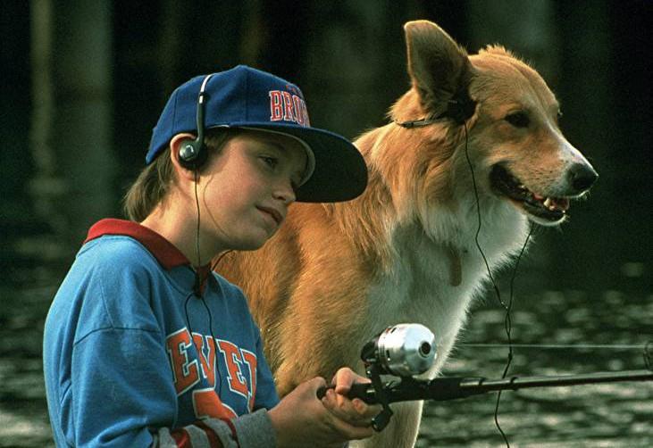 bingo e1427861643994 The 101 Greatest Dogs in Film History