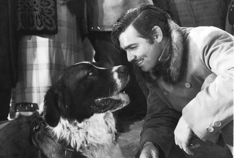 callofthewild e1427898240886 The 101 Greatest Dogs in Film History