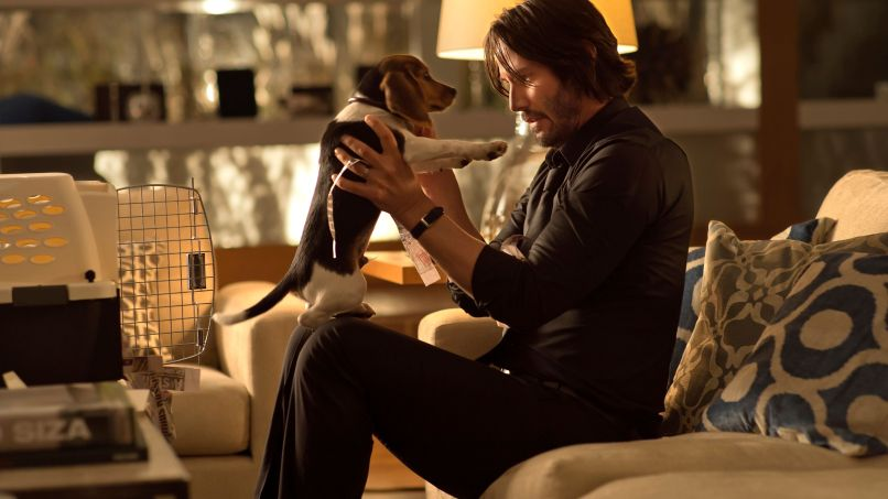 john wick beagle The 101 Greatest Dogs in Film History