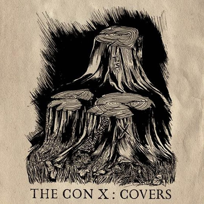 tegan and sara the con x covers artwork Grimes, Ryan Adams, CHVRCHES, Hayley Williams featured on Tegan and Saras The Con X: Covers album