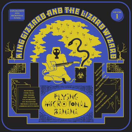 gizzard 1 Band of the Year King Gizzard and the Lizard Wizard Cant Stop, Wont Stop, and Dont Need to Stop