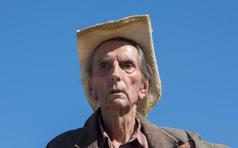 harry dean stanton lucky movie Top 25 Movies of 2017