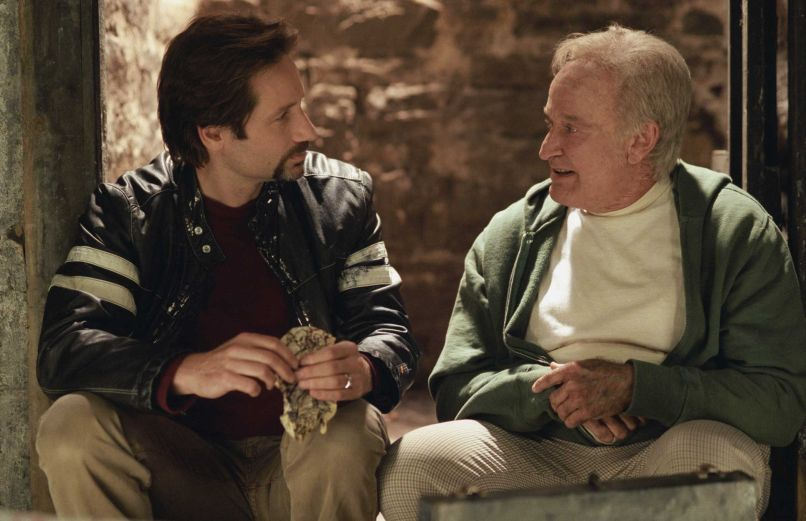 house of d 10 Years and 10 Questions with David Duchovny: On Garry Shandling, Bonnie Hunt, and Fighting for the Future