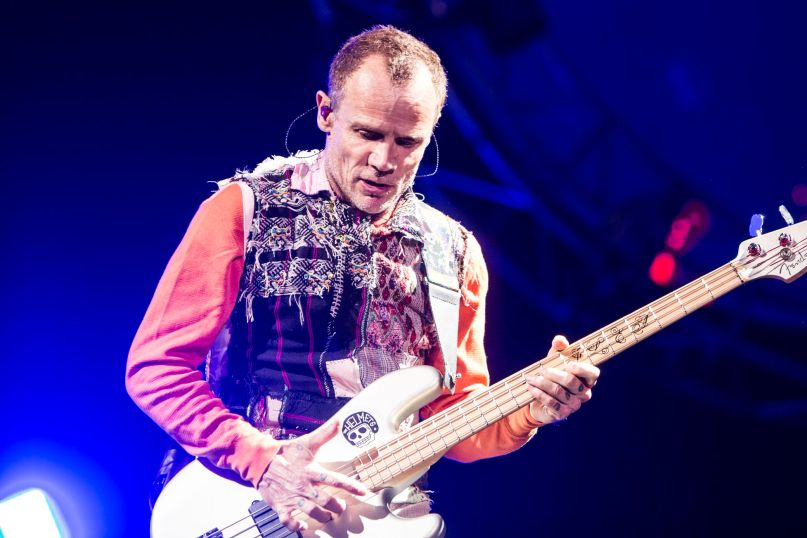 Flea, photo by Philip Cosores
