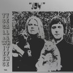Ty Segall and White Fence Joy Album Artwork