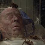 Arachnaphobia remake james wan spiders web