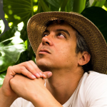 M. Ward surprise release What a wonderful industry hat plants leaves