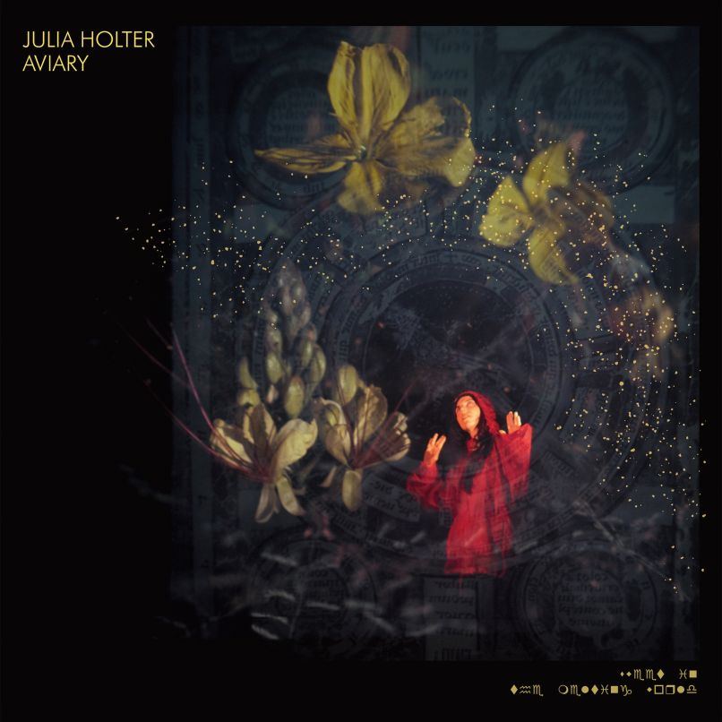 Julia Holter Aviary Album Cover Artwork