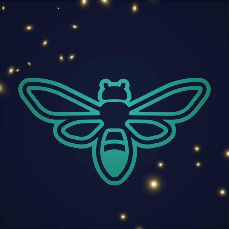 Firefly Festival 2019