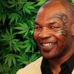 Mike Tyson hosting marijuana-themed music festival