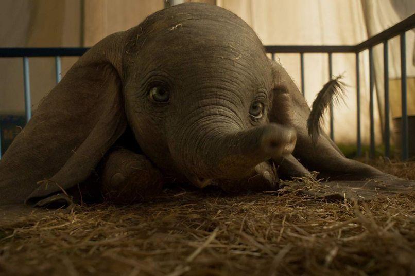 Dumbo (Walt Disney Studios)
