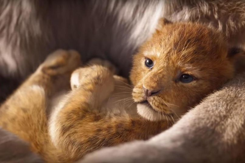The Lion King (Walt Disney Studios)