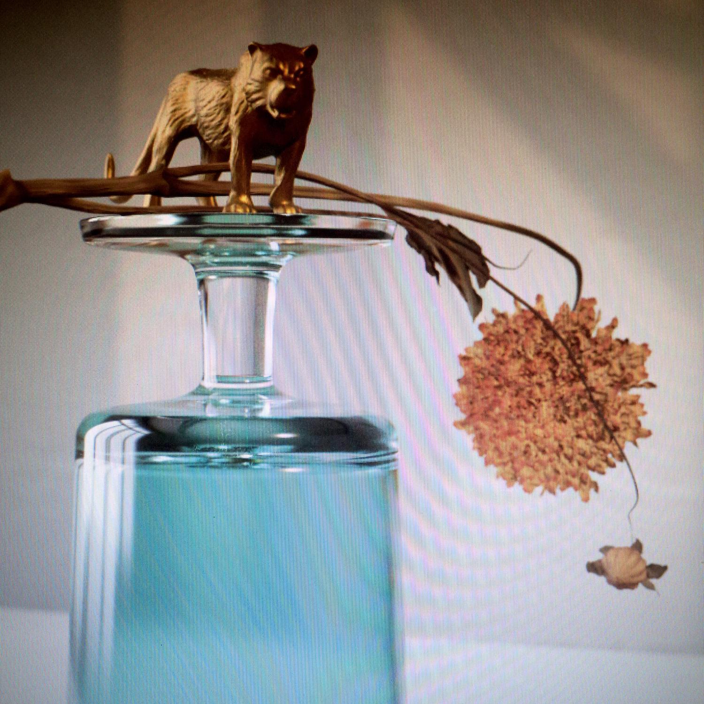 Beirut Gallipoli Album Cover Artwork