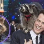Oreo the Raccoon Rocket James Gunn Marvel guardians of the Galaxy RIP death obit