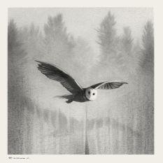 """Owl"" x The Art of Twin Peaks (Mondo)"