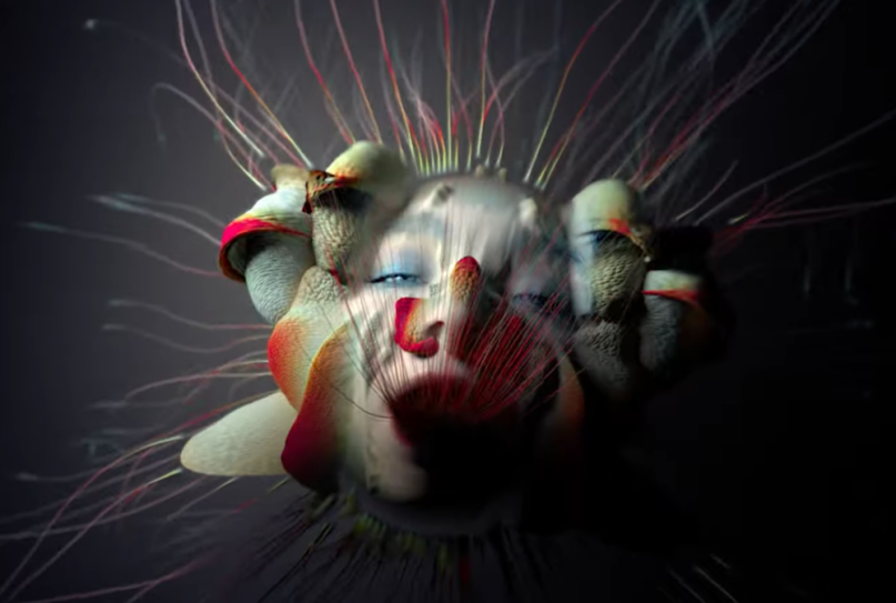 "bjork ""tabula rasa"" music video watch new release utopia album"