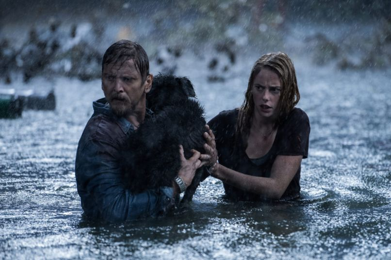 The Crawl Film Review: Crawl Brings All the Right Summer Thrills of a Nail Biting Creature Feature