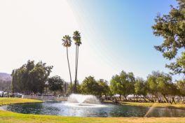 Pasadena Daydream Festival, photo by Debi Del Grande