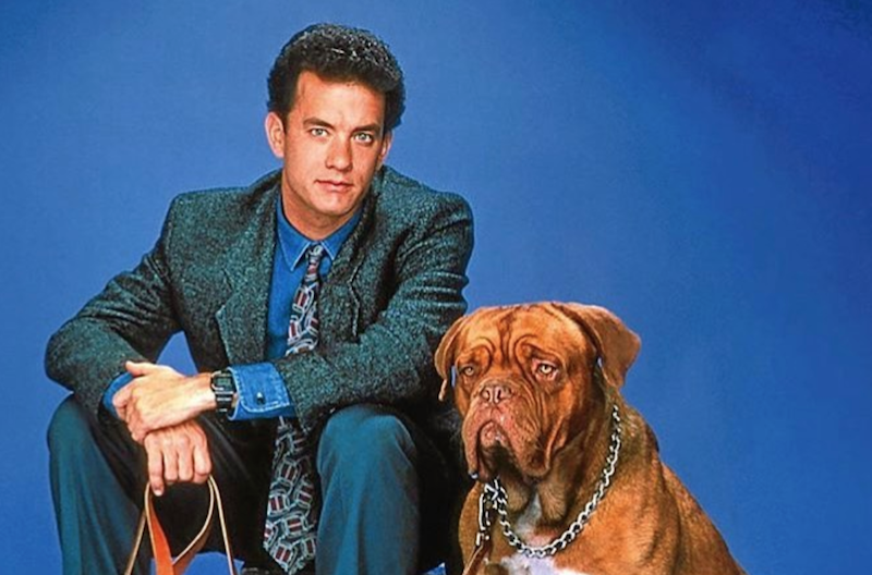 Turner And Hooch Reboot Disney Plus Tom Hanks