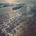 Shore by Fleet Foxes album artwork cover art