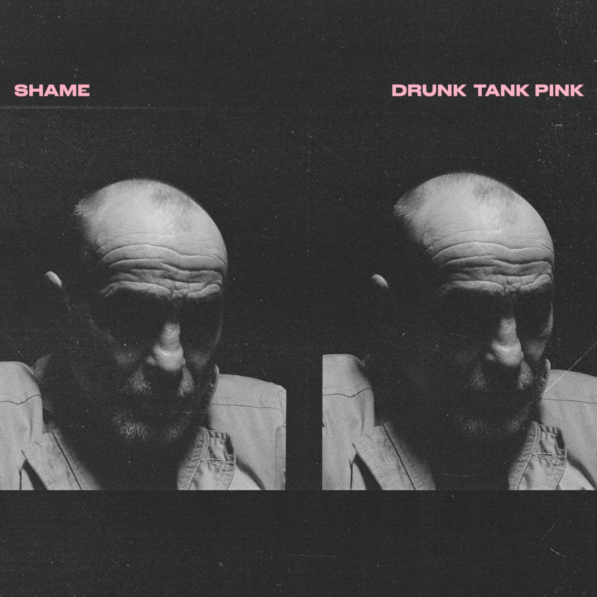 Shame Drunk Tank Pink album art