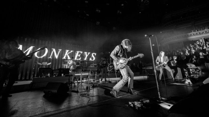 arctic monkeys live at the royal albert hall album stream benefit